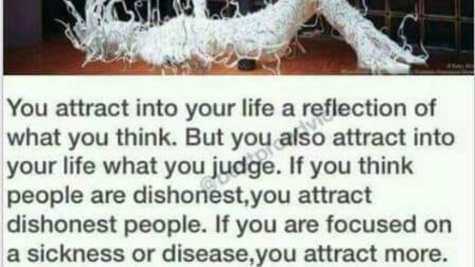 you attract into your life