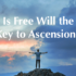 Is Free Will the Key to Ascension?