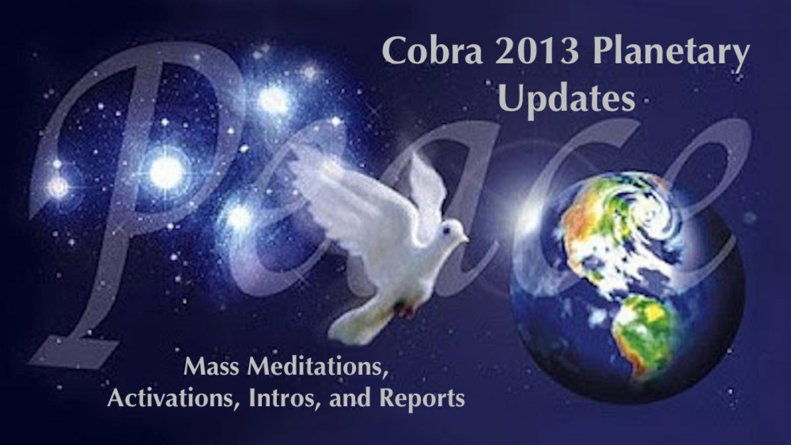 cobra 2013 updates